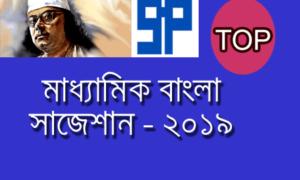 Madhyamik 2019 Bengali Last Minute Suggestion | একটিমাত্র রচনা