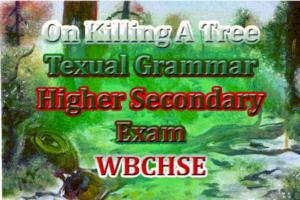 on-killing-a-tree-grammar